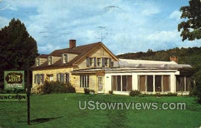 Yellow Aster Restaurant - Pittsfield, Massachusetts MA Postcard