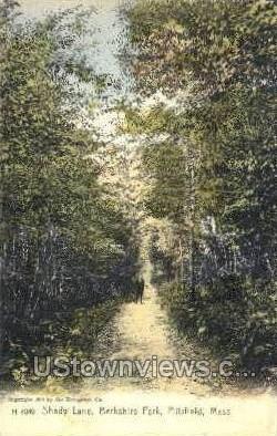 Shady Lane, Berkshire Park - Pittsfield, Massachusetts MA Postcard