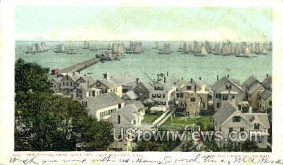 The Harbor - Provincetown, Massachusetts MA Postcard
