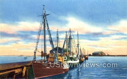 Fishing Boats - Provincetown, Massachusetts MA Postcard