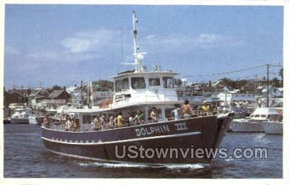 Dolphin 3 - Provincetown, Massachusetts MA Postcard
