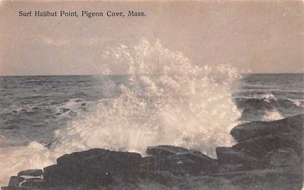 Surf Halibut Point Pigeon Cove, Massachusetts Postcard