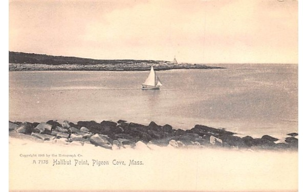 Halibut Point Pigeon Cove, Massachusetts Postcard