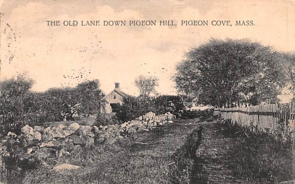 The Old Lane  Pigeon Cove, Massachusetts Postcard
