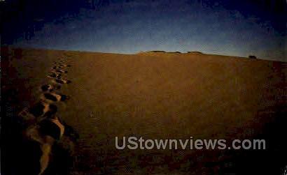 Sand Dune - Cape Cod, Massachusetts MA Postcard