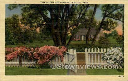 Typical Cape Cod Cottage - Massachusetts MA Postcard
