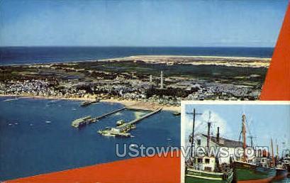Provincetown Shoreline - Cape Cod, Massachusetts MA Postcard