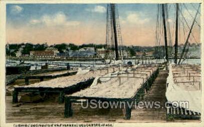Gloucester, Massachusetts     ;     Gloucester, MA Postcard