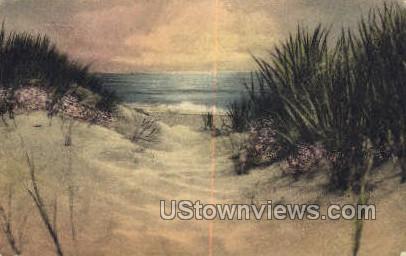 Sand Dunes & Sea - Cape Cod, Massachusetts MA Postcard