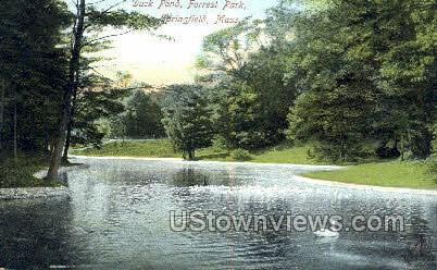 Duck Pond, Forrest Park - Springfield, Massachusetts MA Postcard