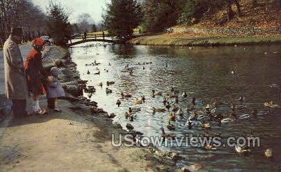 Forest Park, Porter Lake - Springfield, Massachusetts MA Postcard