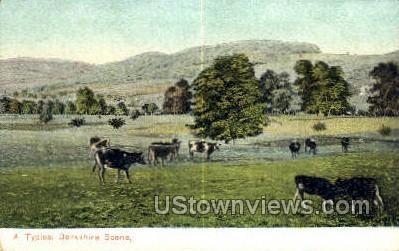 Berkshire Hills, MA,     ;     Berkshire Hills, Massachusetts Postcard