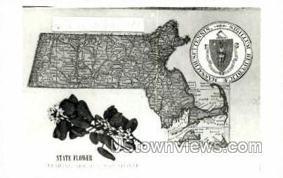 State Flower, May Flower - Misc, Massachusetts MA Postcard