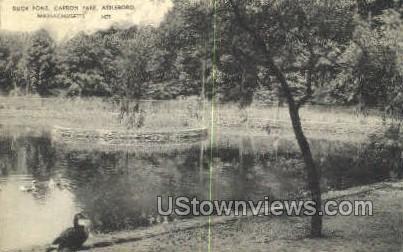 Duck Pong, Capron Park - Attleboro, Massachusetts MA Postcard