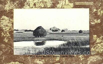 Plum Island Marshes - Newburyport, Massachusetts MA Postcard
