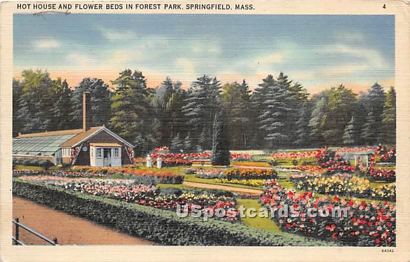 Hot House & Flower Beds in Forest Park - Springfield, Massachusetts MA Postcard