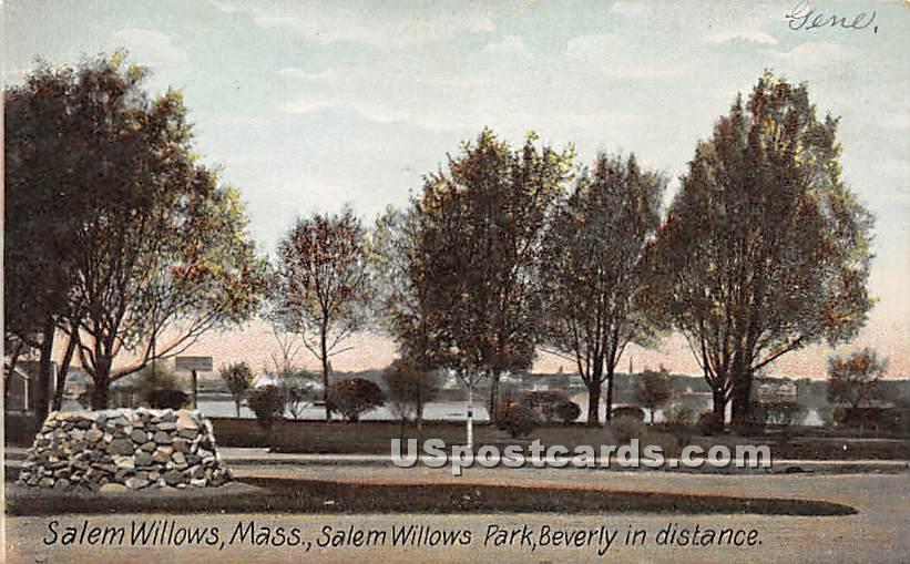Salem Willows Park - Massachusetts MA Postcard