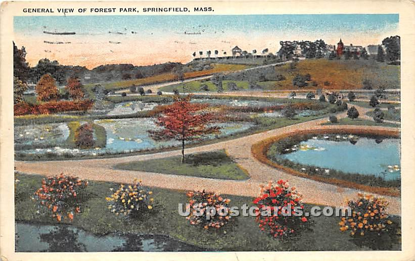 General view of Forest Park - Springfield, Massachusetts MA Postcard