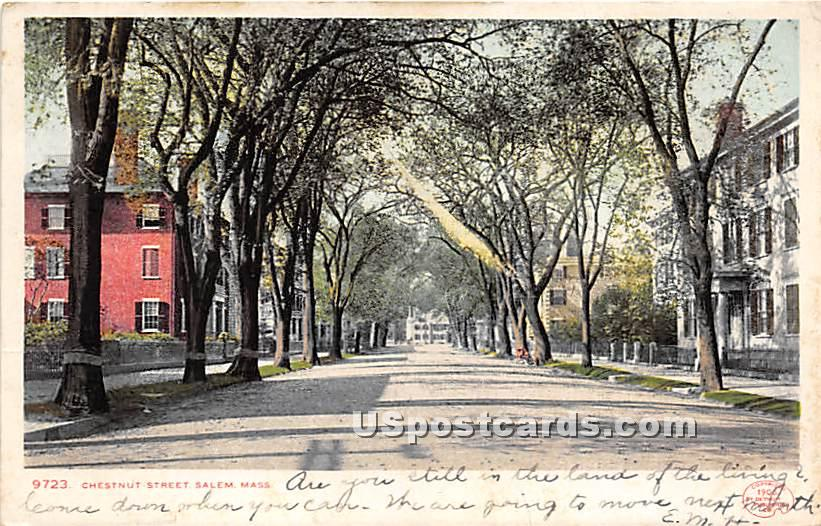 Chestnut Street - Salem, Massachusetts MA Postcard