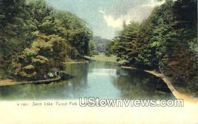 Swan Lake, Forest Park - Springfield, Massachusetts MA Postcard
