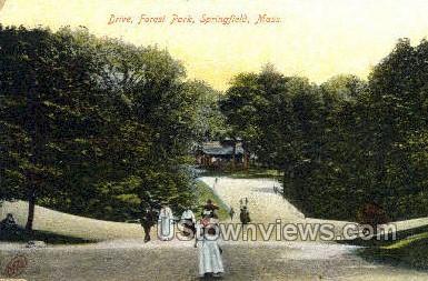 Drive, Forest Park - Springfield, Massachusetts MA Postcard