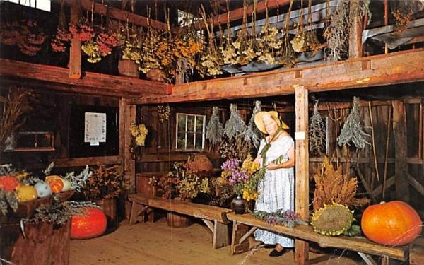 Inside the Herb Barn Sturbridge, Massachusetts Postcard