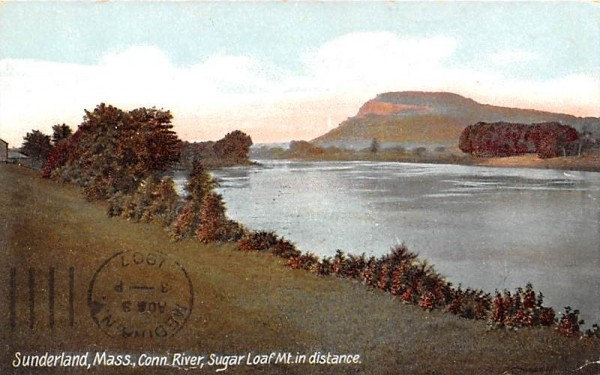 Conn. River  Sunderland, Massachusetts Postcard