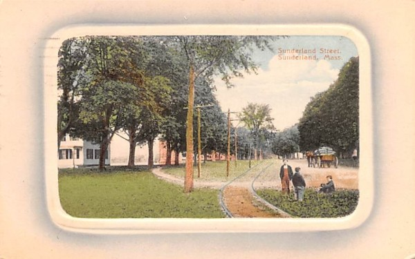 Sunderland Street Massachusetts Postcard