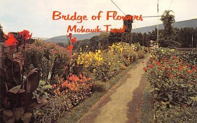 Bridge of Flowers Shelburne Falls, Massachusetts Postcard