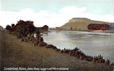 Conn. River  Sunderland, Massachusetts Postcard