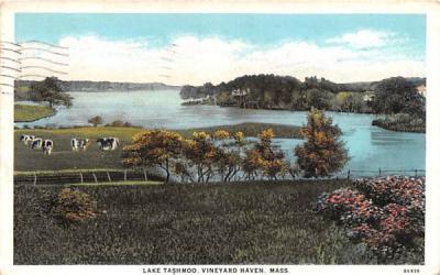 Lake Tashmoo Vineyard Haven, Massachusetts Postcard
