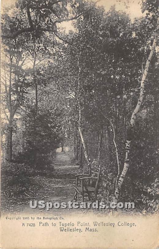 Path to Tupelo Point at Wellesley College - Massachusetts MA Postcard