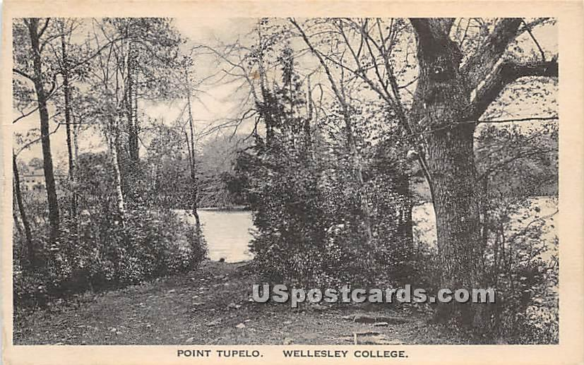 Point Tupelo at Wellesley College - Massachusetts MA Postcard