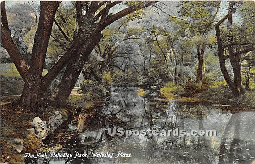 The Pool at Wellesley Park - Massachusetts MA Postcard