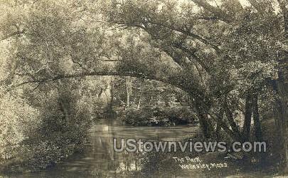 Real Photo - The Park - Wellesley, Massachusetts MA Postcard