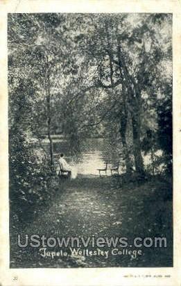Jupelo, Wellesley College - Massachusetts MA Postcard