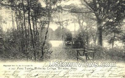 Point Tupelo, Wellesley College - Massachusetts MA Postcard