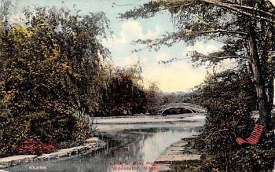 Lake in Elm Park Worcester, Massachusetts Postcard