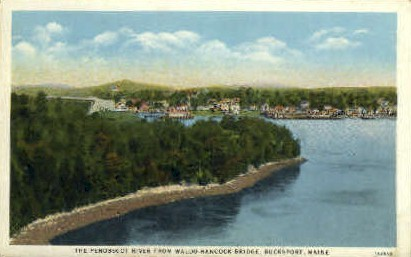 The Penobscot River - Bucksport, Maine ME Postcard