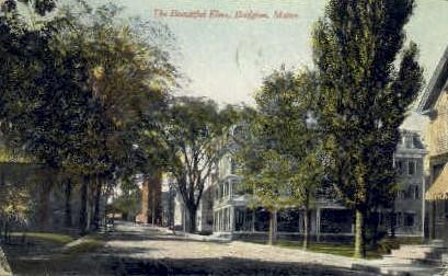 Elms - Bridgton, Maine ME Postcard