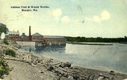 Salmon Pool & Water Works - Bangor, Maine ME Postcard