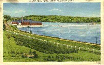 Salmon Pool - Bangor, Maine ME Postcard