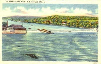 The Salmon Pool & Falls - Bangor, Maine ME Postcard