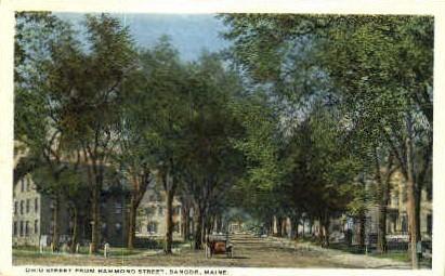 Ohio St. - Bangor, Maine ME Postcard