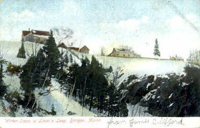 Lover's Leap - Bangor, Maine ME Postcard