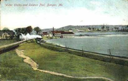 Water Works & Salmon Pool - Bangor, Maine ME Postcard