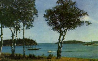 Yachts in Harbor - Bar Harbor, Maine ME Postcard
