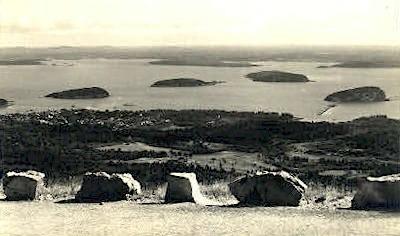 Porcupines - Bar Harbor, Maine ME Postcard