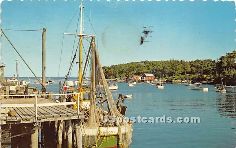 Sea Gulls - Bar Harbor, Maine ME Postcard