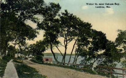 Water St. - Castine, Maine ME Postcard